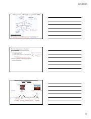 Lec 10 Energy Generation I Slides Fermentation and Respiration x3.12
