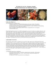 10 SWS Echinoderms Fall 2014 (1)
