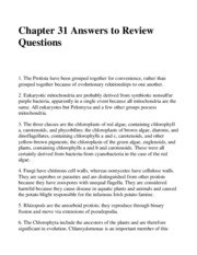 Chap31AnswersReview Questions