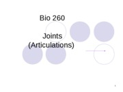 Bio 260 Skeletal System _3_ Joints (articulations)