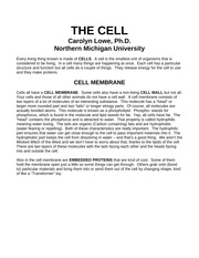 THE CELL (1)