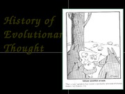 1-evolutionary thought