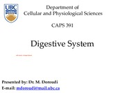 CAPS 391 Digestive System