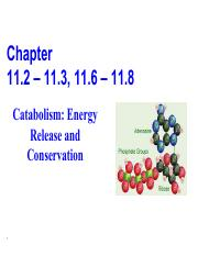 Unit  2 Chapter 11.2 to 11.3_11.6 to 11.8.pdf