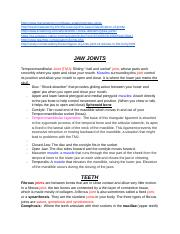 Jaw and Teeth (Notes).docx