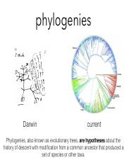 evolutionary_trees.pdf