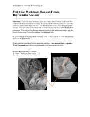 Unit 8 Assignment Real Anatomy WS.pdf