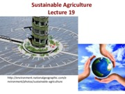 Lecture 19 Sustainable Agriculture