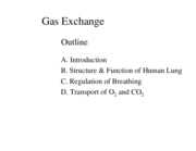 Gas%20Exchange%20Figs%20BW