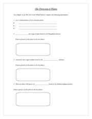 The_Diversity_of_Plants-worksheet