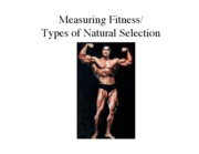 Fitness_and_Natural_Selection[1]
