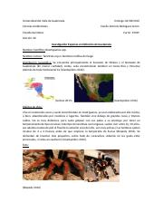 Documento explicatorio.docx