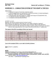 Exercise 31 - Conduction System of the Heart & The ECG
