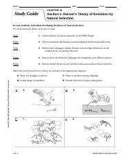 Study_Guide_chapter 15 answers.doc