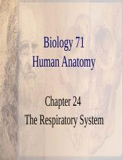 Chapter 24 Respiratory.ppt