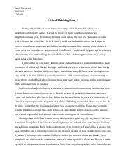 Critical Thinking Essay 3.docx