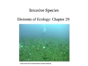Lecture 21-Introduced Species