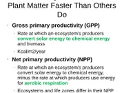 GPP and NPP and nutrients