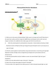 Photosynthesis Review Worksheet Distance Learning.docx