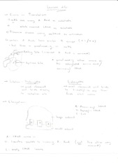Lecture 20 Workshop Notes 1