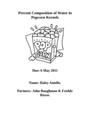 popcorn lab report
