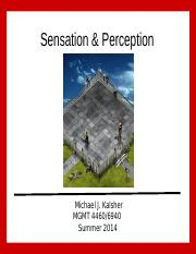 Sensation and Perception.ppt