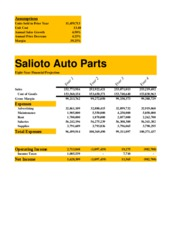 Lab 3-1 Salioto Auto Parts Eight-Year Financial Projection