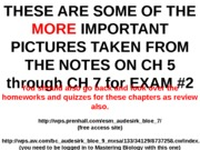 EXAM_2_Review_pictures_for_EXAM_2_on_CH_5_to_CH_7