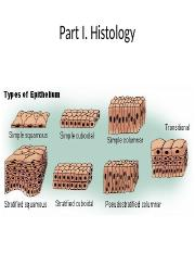 Histology and Anatomical Terms.pptx