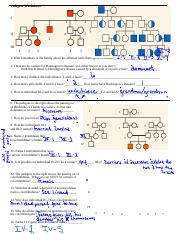 Pedigree_extra_Worksheet_Key (1).doc - Pedigree Worksheet ...