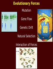 ANTH 3_module 02_lecture 08_evolutionary forces_S 2018.pptx