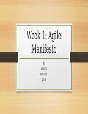 Week1_Principles behind the Agile Maifesto