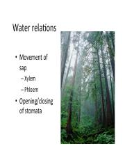 6 water relations.pdf