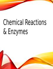 PPT 3 - Chemical Reactions & Enzymes, Edmodo.pptx