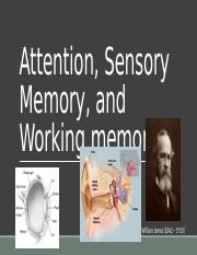 Attention, Sensory Memory, and Working memory Part 1.pptx