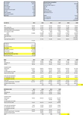 Sample Company Valuation Worksheet