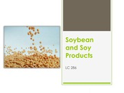 Soybean and Soy Products