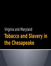 L-6 Tobacco and Slavery on the Chesapeake Student Slides (7)