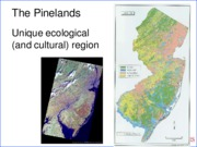 Pinelands_ lecture