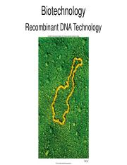 Recombinant DNA Technology.pdf