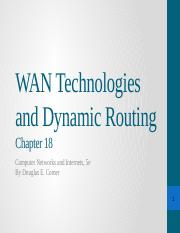 C18 WAN Technologies and Dynamic Routing .pptx