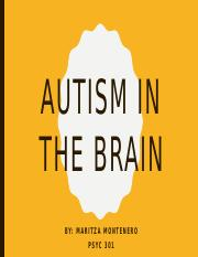 autism in the brain