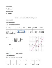 MATH 1462 Assignment on Numerical Limits