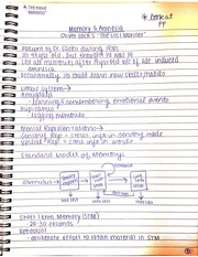 Memory and Amnesia Notes