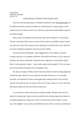 Critical Essay on Theme of The Scarlet Letter