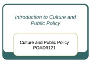 Week 1 Introduction to Culture and Public Policy