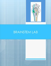Brainstem Lab