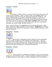 Membranes160-page4