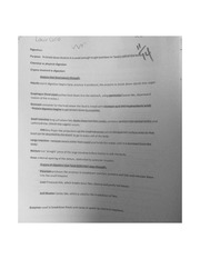 Digestion Test Review Worksheet