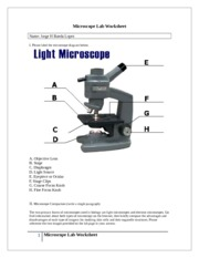 Microscope Lab 4_Bio